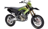 DSK Benelli BX-250 Photo