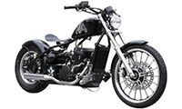 Regal Raptor Bobber 350 Photo
