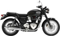 Triumph Bonneville T100  Photo