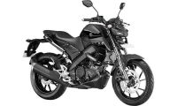 Yamaha MT-15 Photo