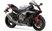Yamaha YZF R1S Photo