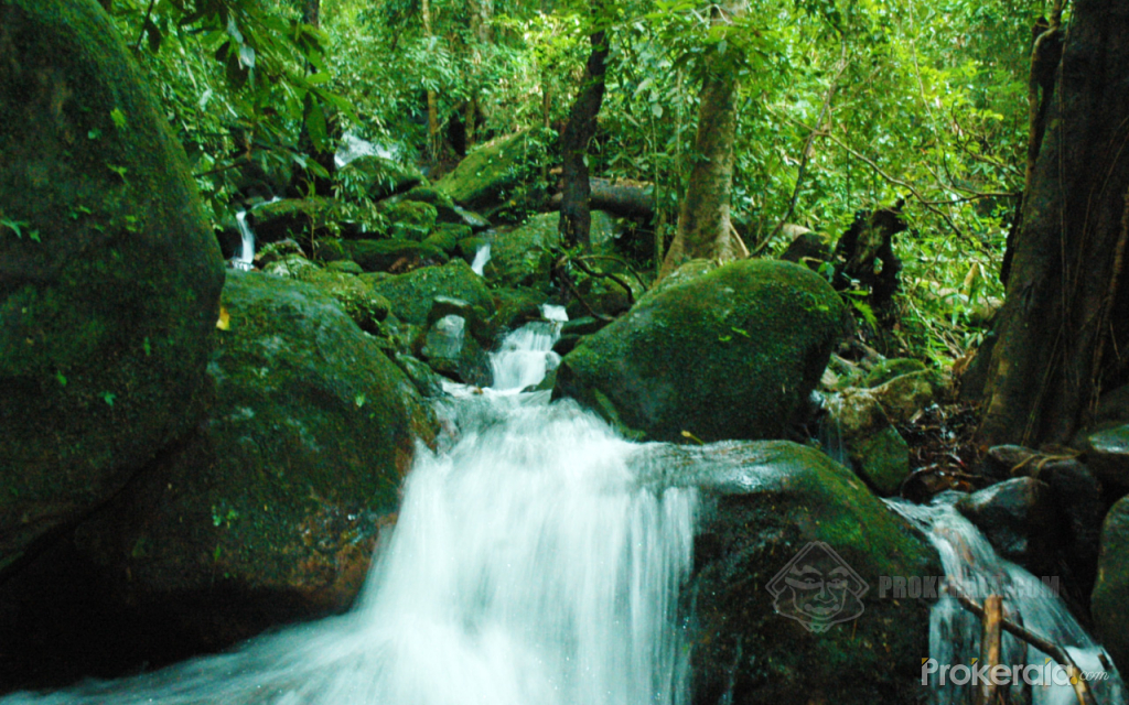 Photo of a waterfall in the forests of Kerala