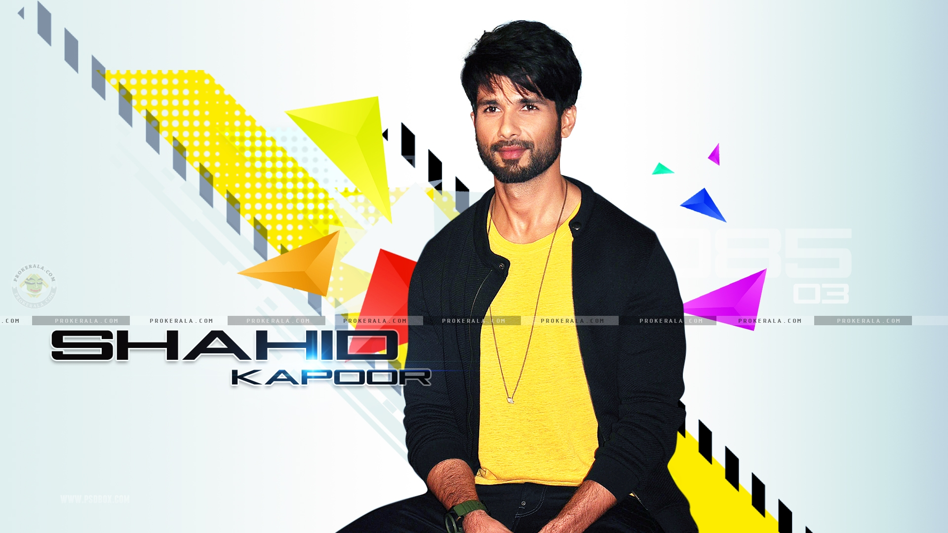 Shahid Kapoor New Movie Shandaar Wallpapers