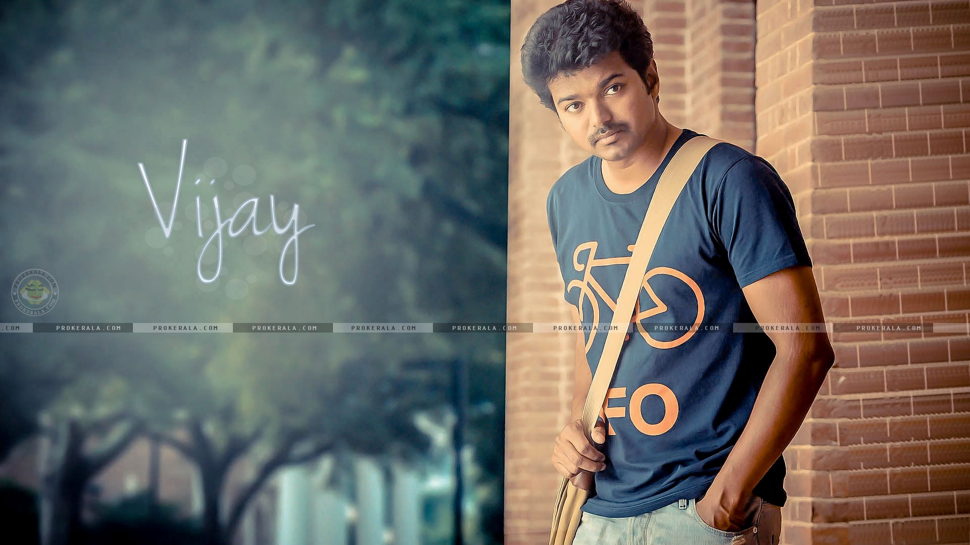 Vijay Love Hd Wallpaper : Vijay Wallpaper