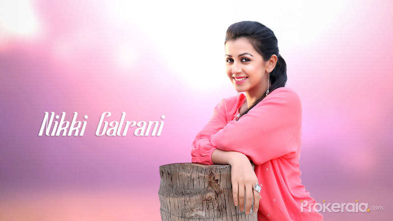 Nikki Galrani Wallpaper #4