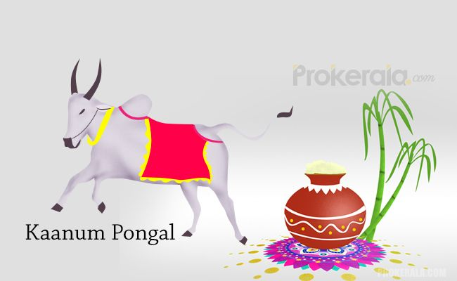 good time for pongal 2019