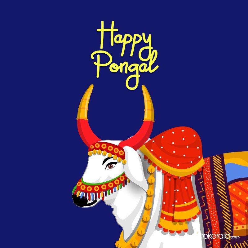 Happy Pongal Whatsapp Status posts and videos