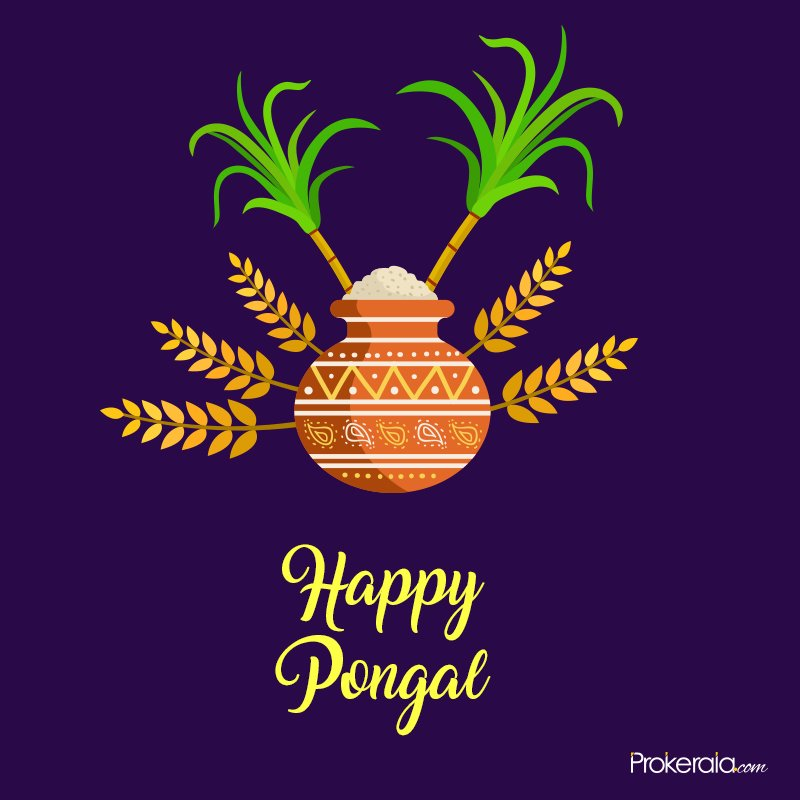 Have a wonderful Pongal celebration with family