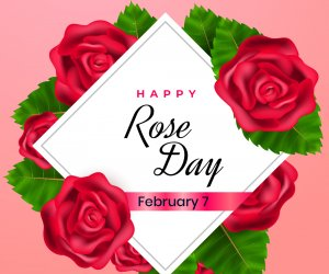 Happy Rose Day 2020: Share Whatsapp wishes this Valentine Day with rose images, love messages  with your love