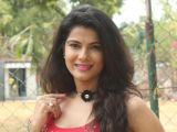 Manisha Shree