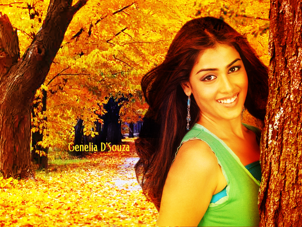 Genelia D Souza Wallpapers 30 Hd Pics: Download Genelia D'Souza Wallpaper # 13