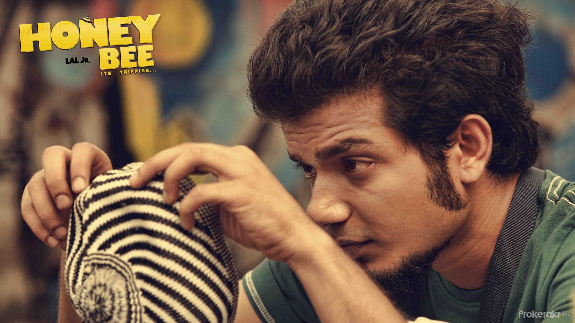Honey Bee Wallpapers | Bhavana | Asif Ali | Archana Kavi ...