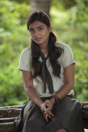 torrenz malayalam movies 2014