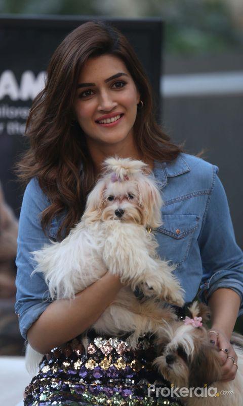 Actress Kriti Sanon at the Mars Pet Care event at Tote mahalxmi.