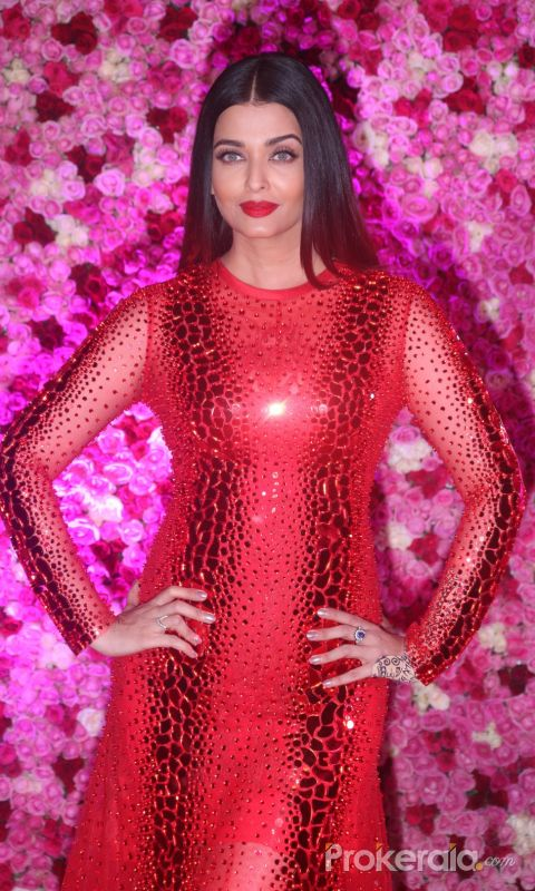 The Red Carpet Of Lux Golden Rose Awards
