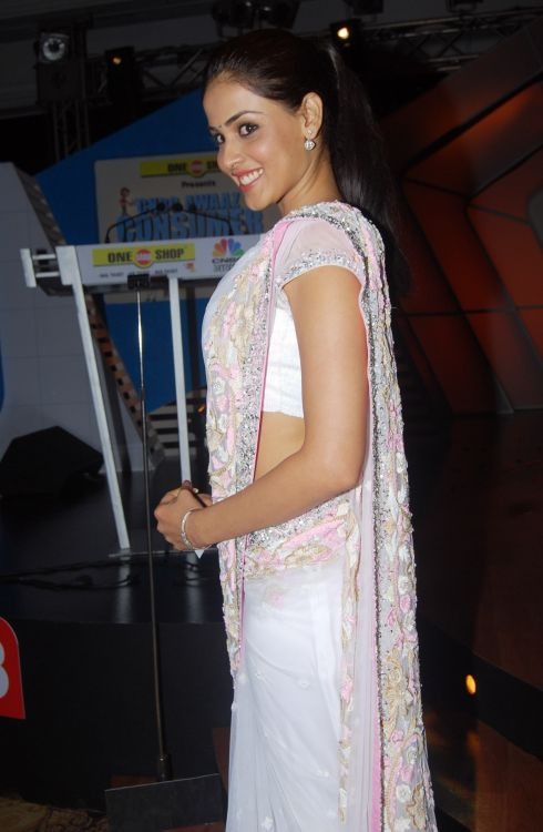 Genelia D'Souza in saree