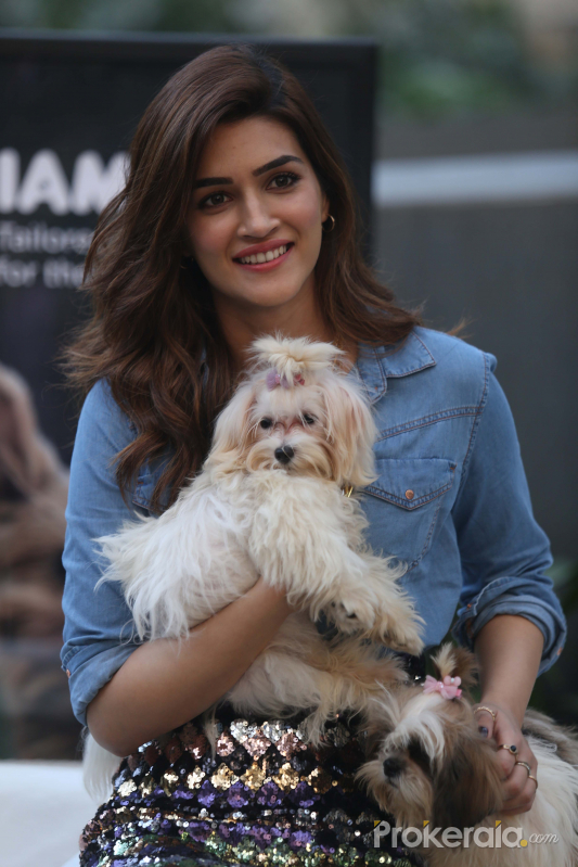 Actress Kriti Sanon at the Mars Pet Care event at Tote mahalxmi.