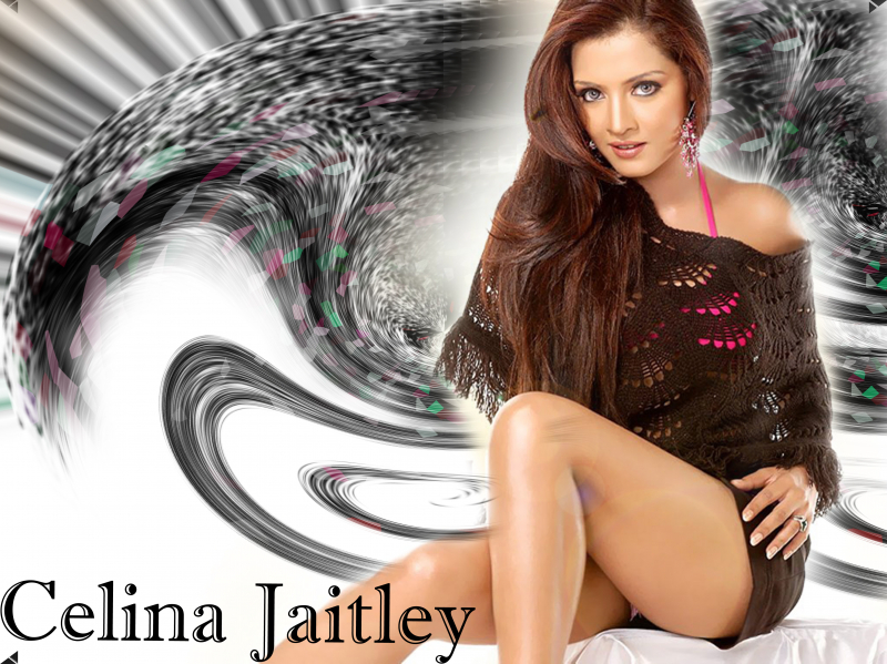 Celina Jaitley Wallpaper #8