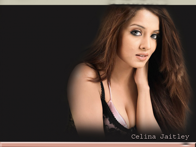 Celina Jaitley Wallpaper #3