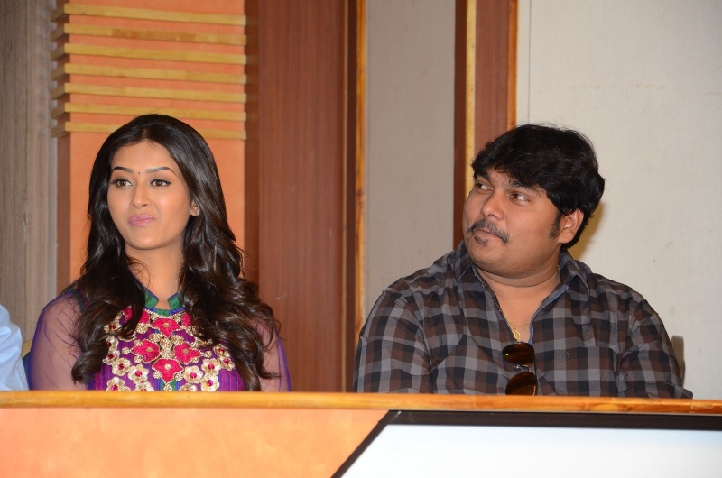 Dwarka Success Meet