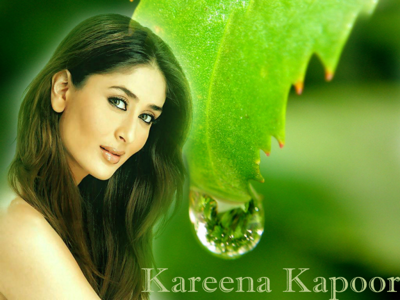 Kareena Kapoor Wallpaper #20