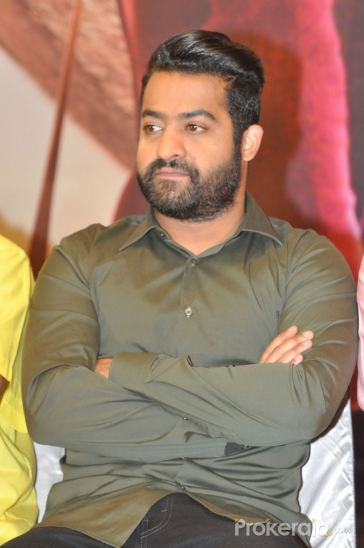 nannaku prematho success meet avasarala family
