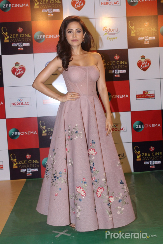 Red Carpet Event Of Zee Cine Awards 2018