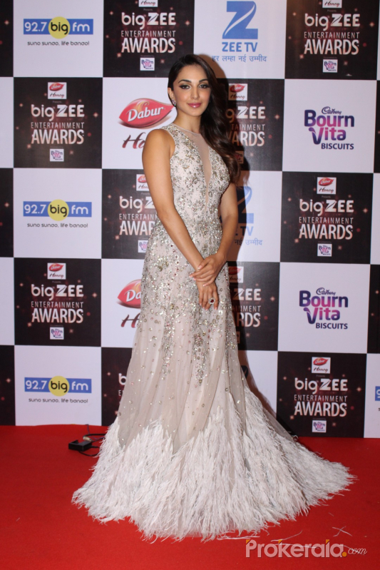 Red Carpet Of Big Zee Entertainment Awards