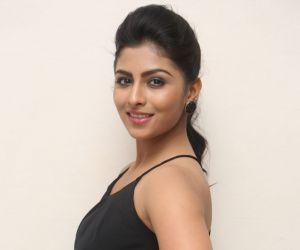 Krithika at Intlo Deyyam Nakem Bhayam Success Meet
