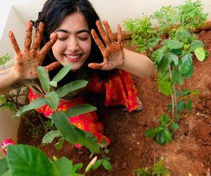 Rashmika Mandana, the young heroine who accepted the Akkineni Samantha Green Challenge