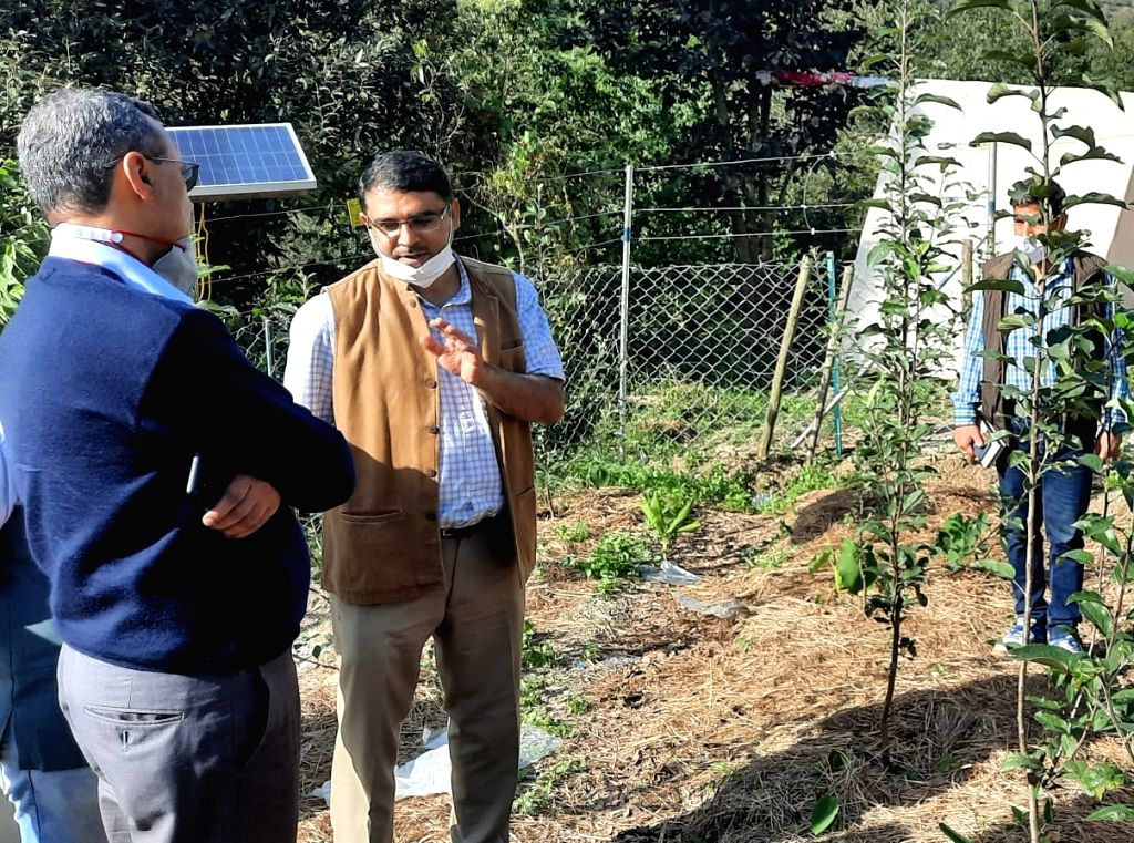 1.Director, CSIR-IMTech Sanjeev Khosla (second from right) on a visit to an farmer's apple orchard in Moolberi village near Shimla with two other scientists earlier this week