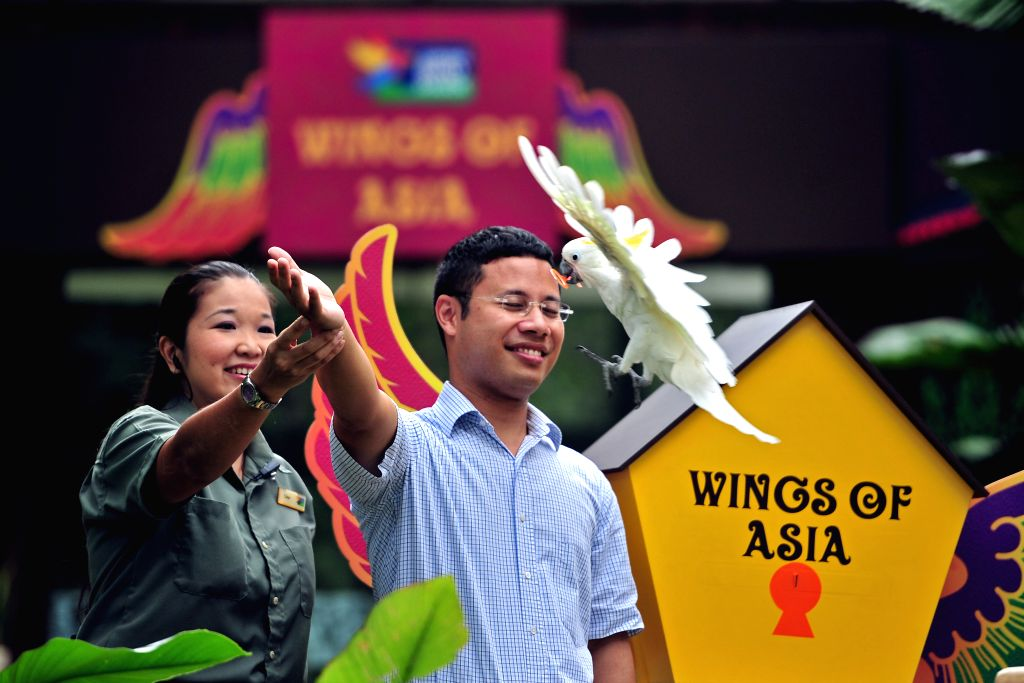"Singapore's Minister of State for National Development Desmond Lee (R) attends the opening ceremony for its latest aviary ""Wings of Asia"" in"