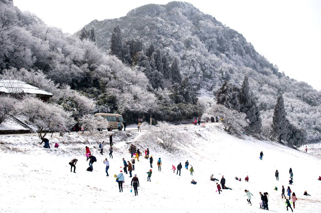 Tourists play in the snow-covered Jinfo Mountain scenic spot of southwest China's Chongqing, Feb. 6, 2015. Since winter began, scenic spots like Jinfo .