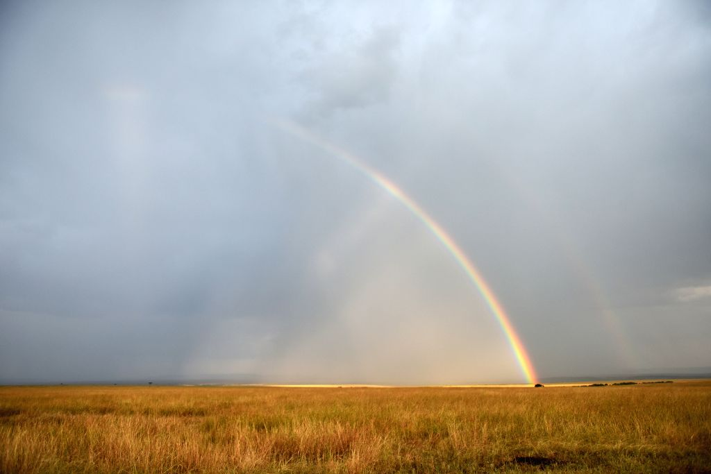 Photo taken on Aug. 15, 2015 shows a rainbow and a secondary rainbow at the Masai Mara National Reserve of Kenya.