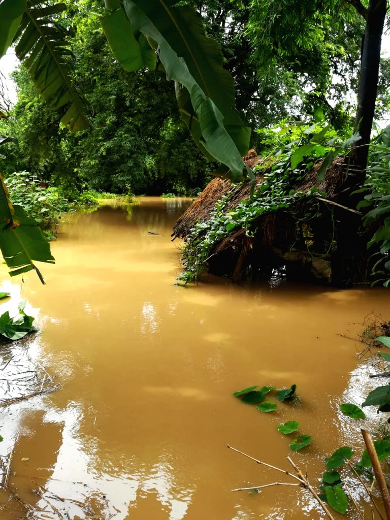 16 dead, over 8 lakh people affected in Odisha floods