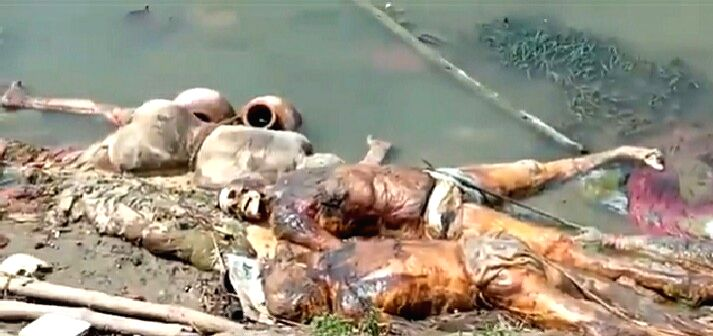30 bodies recovered from river Ganga in Buxar, claims of DM, 'All bodies flowed'.