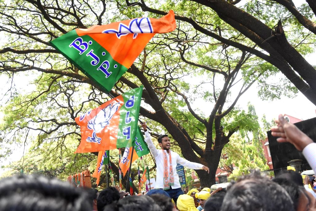 A BJP supporter cheers as he accompanies the party's Lok Sabha candidate from Bengaluru North, D.V. Sadananda Gowda as he heads to file his nomination for 2019 Lok Sabha elections in ...