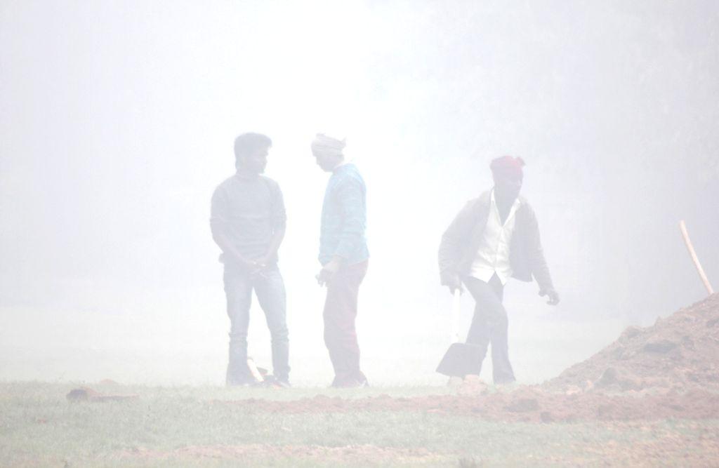 A blanket of dense fog covers New Delhi on Jan 8, 2015.