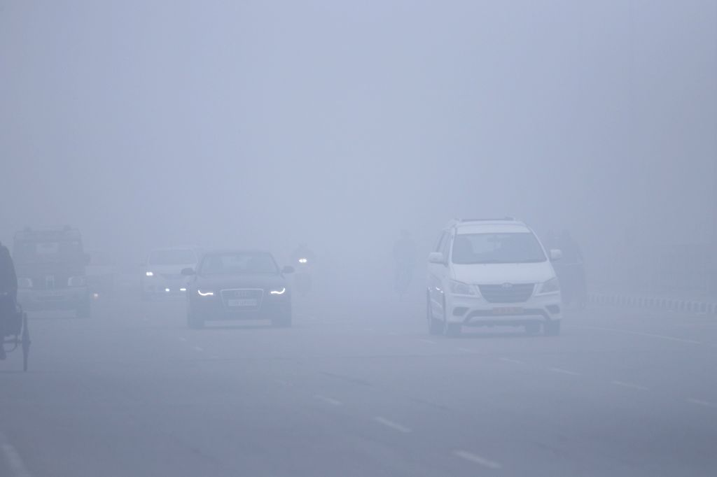 A blanket of dense fog engulfs Chandigarh, on Feb 3, 2019.