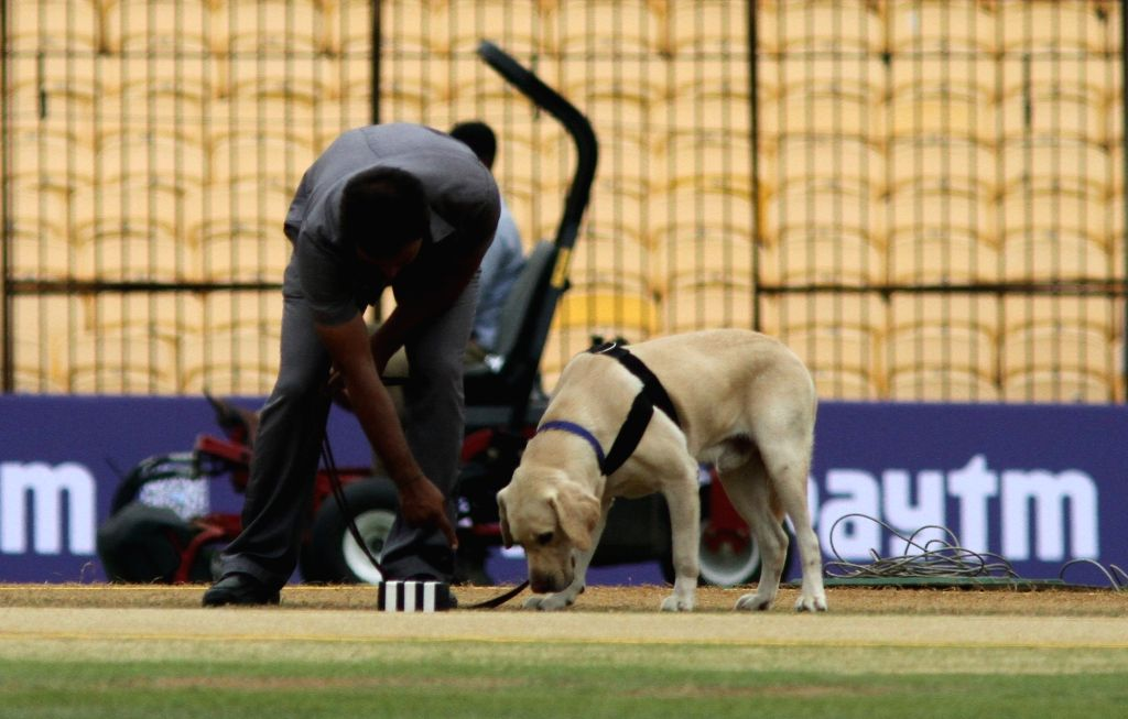 A Bomb squad personal inspect the cricket pitch in Chennai on Sept 16, 2017.