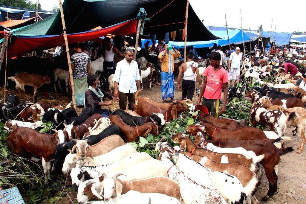 A busy livestock market ahead of Eid-Ul-Zuha celebrations, in Kolkata on Aug 10, 2019.
