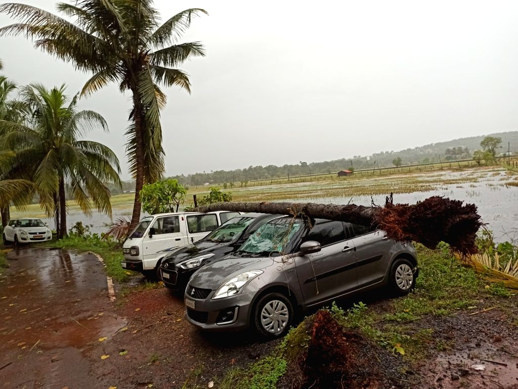 A cyclone hit Goa as several trees uprooted and property damaged at Nerul, some fifteen kilometres from Panaji on Oct. 25, 2019. .