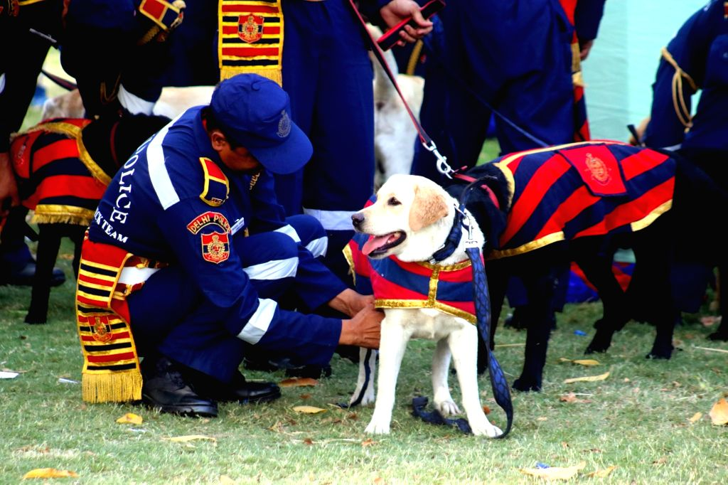 A Delhi Police dog with his handler at India Gate in New Delhi, on April 4, 2016.