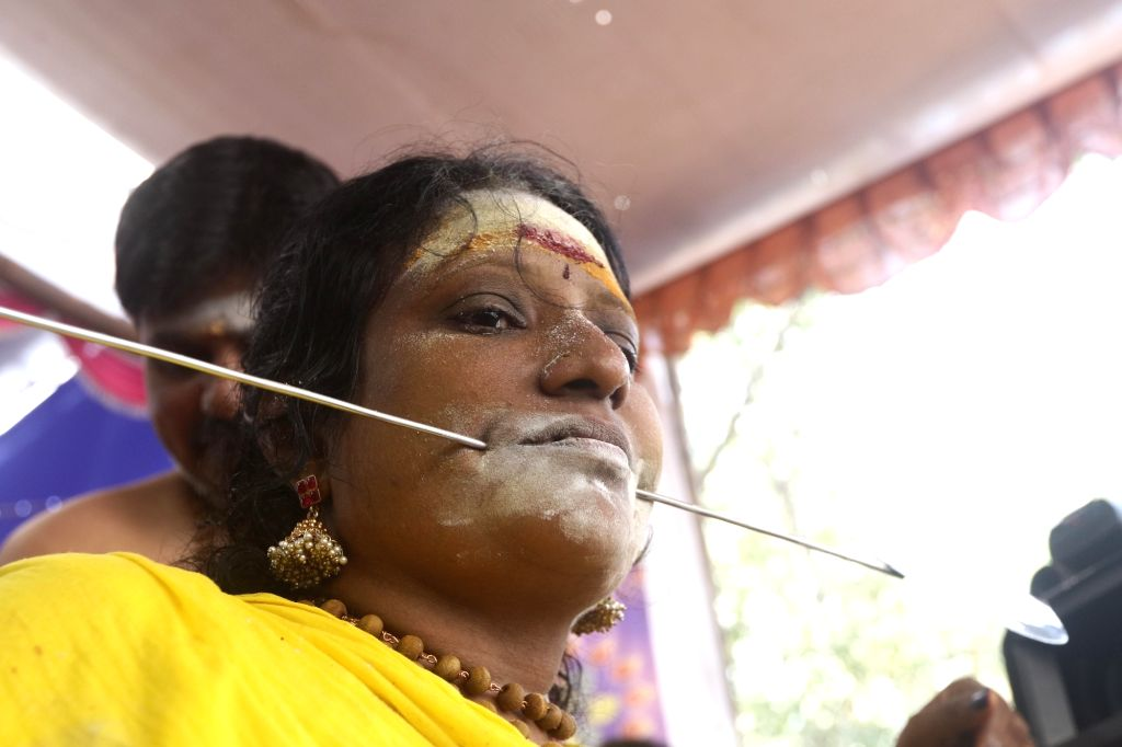 A devotee gets her cheek pierced with vel skewer before undertaking a procession towards the Murugan temple as part of rituals performed during Thaipusam celebrations, in Chennai on Feb 8, ...