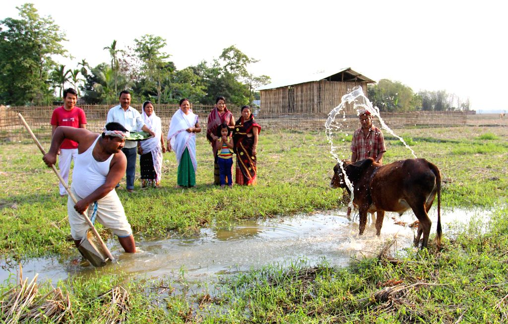 A family performs the rituals on Bohag Bihu at Tengakhat village in Dibrugarh  district of Assam on April 14, 2014.
