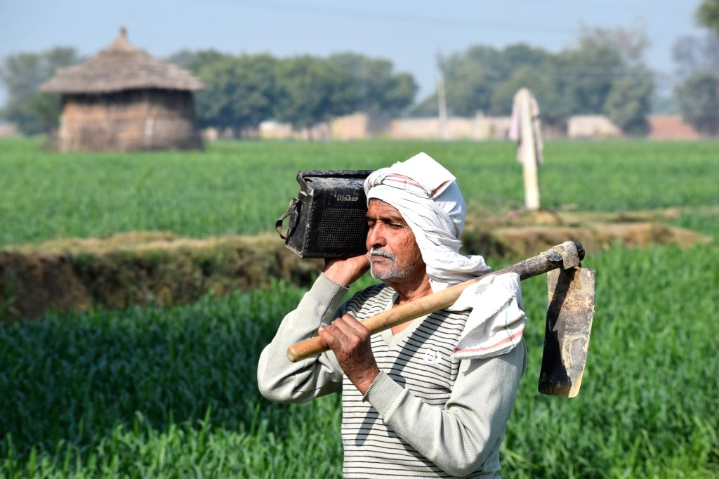 A farmer listens to the broadcast of the Budget 2018-19 on a transistor radio at his farm in Mathura on Feb 1, 2018.