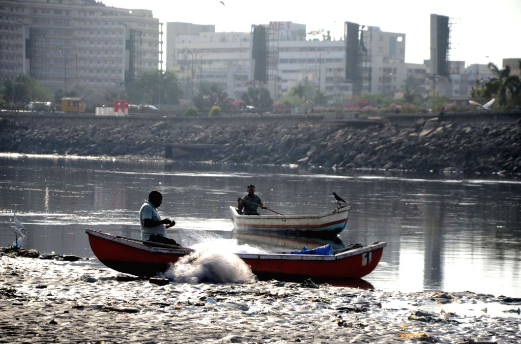 A fisherman returns back to the shore as the 41-day annual fishing ban in Maharashtra commenced from today, in Mumbai on June 3, 2019.