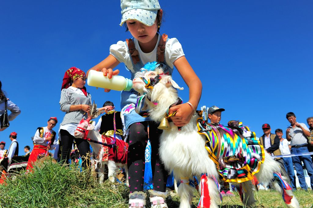 A girl feeds a goat during a goat fair in Hami, northwest China's Xinjiang Uygur Autonomous Region, Aug. 8, 2015.
