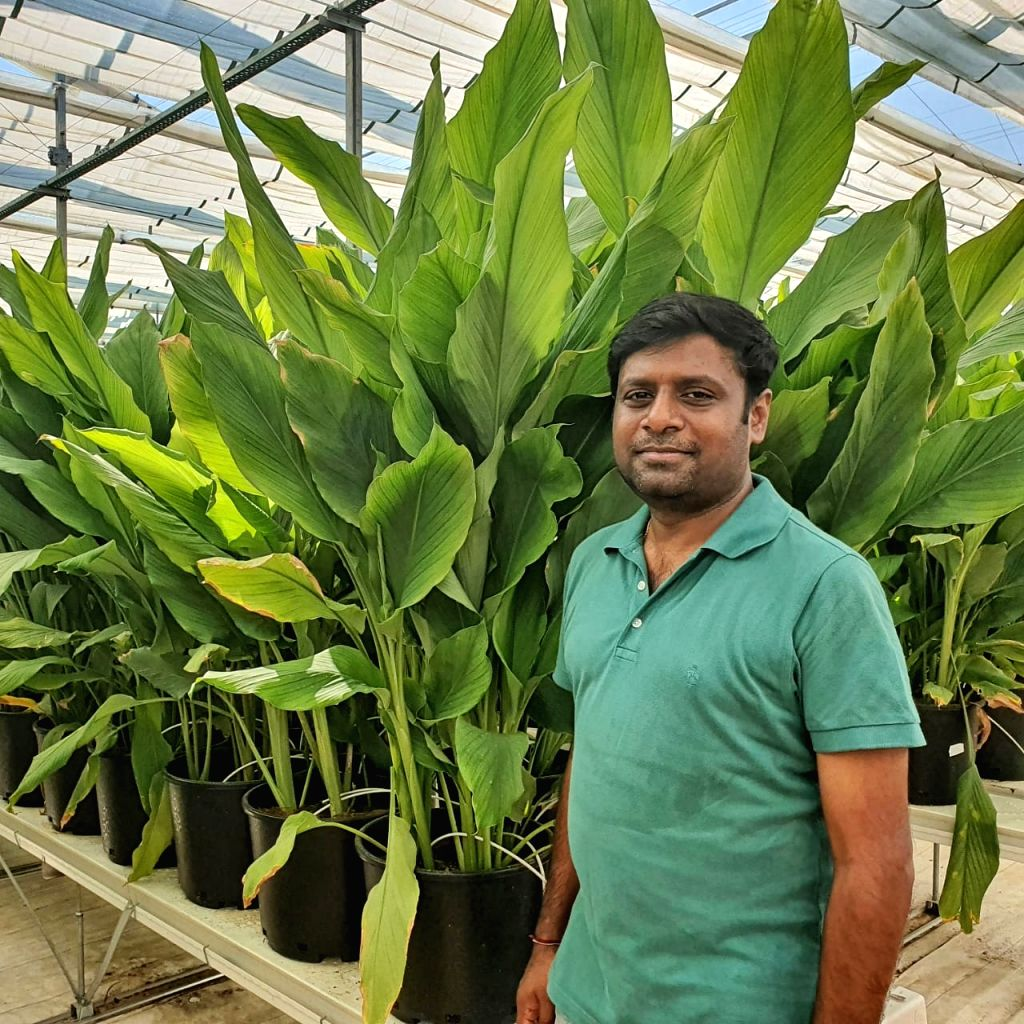 A Hyderabad-based techie who had returned from Australia after a span of 20 years, has recently set up an agri-startup that offers modern technology such as machine learning, artificial intelligence, hydroponics and others to produce fresh and leafy