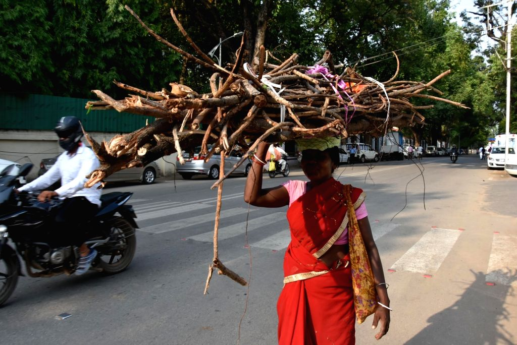 A lady carries firewood on her head in Ranchi, on June 4, 2018. World Environment Day is observed on 5th June.